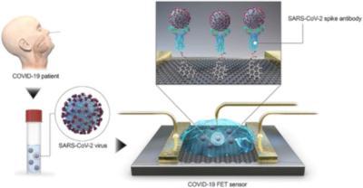 New graphene biosensor can detect SARS-CoV-2 in under a minute