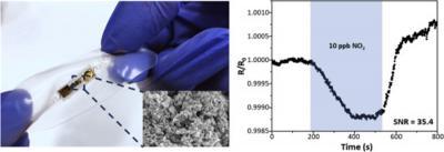 Stretchable and ultrasensitive NO2 sensors based on rGO and MOS2 nanocomposites
