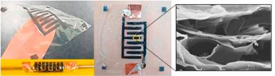Researchers develop graphene-based supercapacitor to power wearable skin sensors