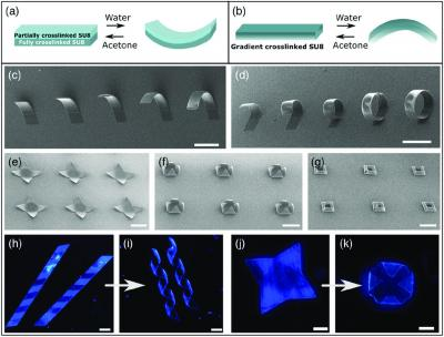 Researchers develop monolayer graphene-based reversible self-folding structures