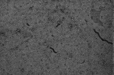 New method to produce graphene nanoribbons could promote use in telecommunications applications