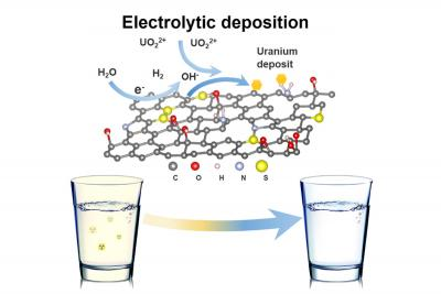 Graphene oxide foam helps filter toxins from drinking water